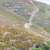 Rhône: Rotweine der Spitzenklasse