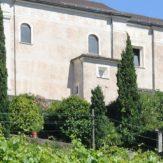 Tessin: Weinanbau im Süden der Schweiz