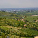 Venetien: bedeutende Weinanbauregion in Italien