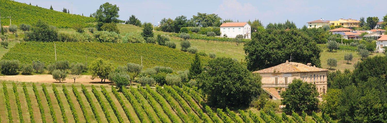 Abruzzen Weinland Italien