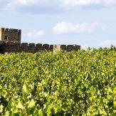 Weinland Portugal