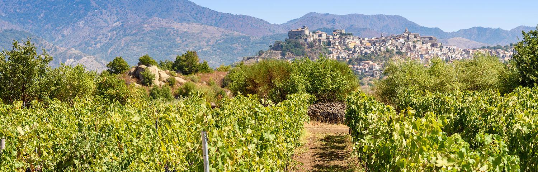 Weinland Italien Silzilien