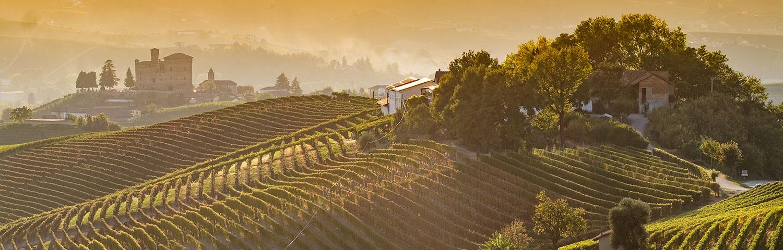 Weinland Italien Piemont