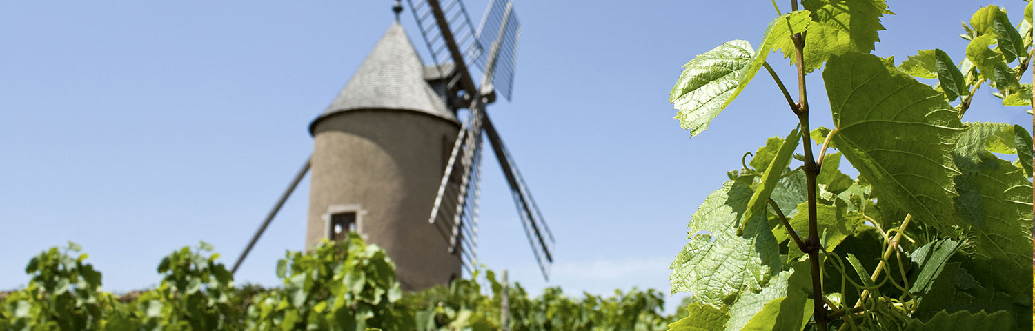 Beaujolais Moulin a Vent