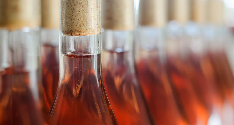Weinherstellung - So wird Wein gemacht