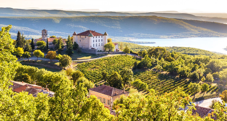 Weinberge in der Provence
