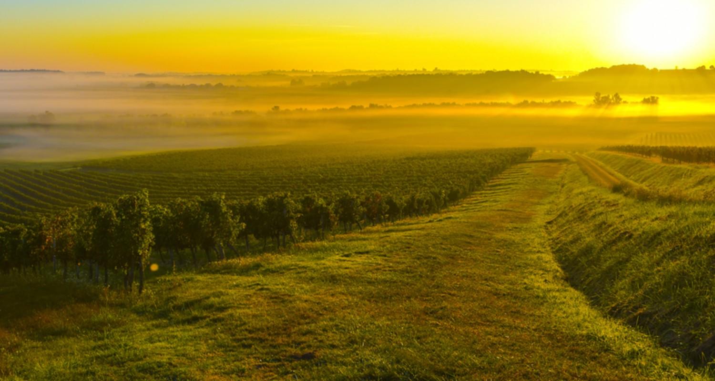 Klima Bordeaux