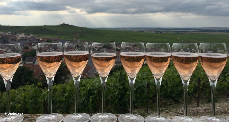Rosé Champagner