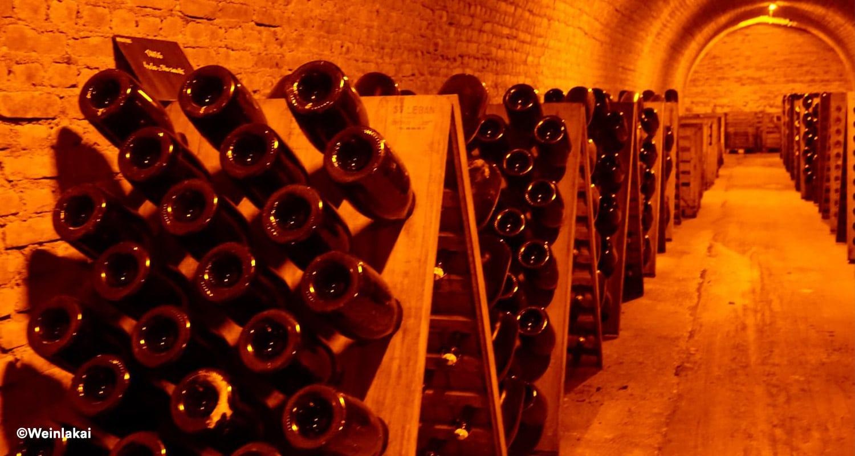Champagner Herstellung Rüttelung