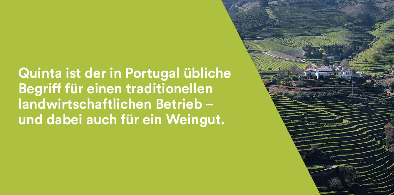 Quinta - portugiesisch für Weingut