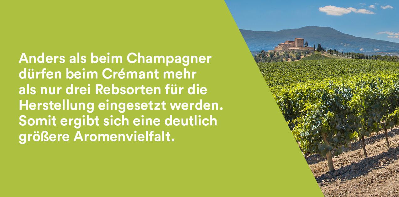 Crémant und Champagner