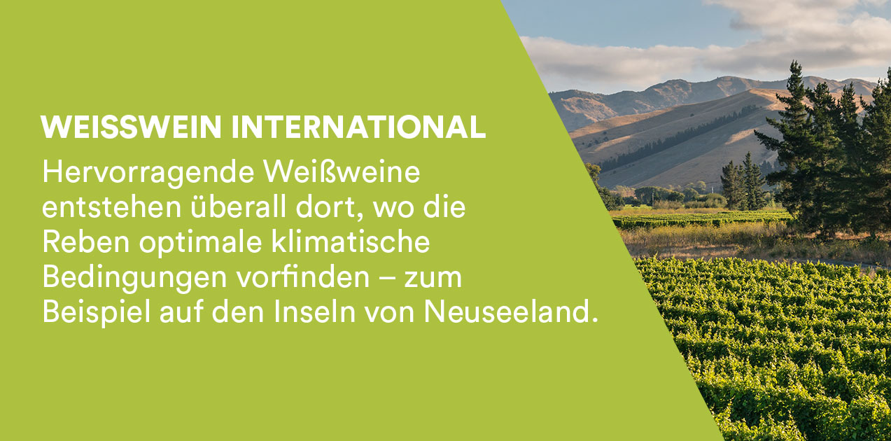 Weisswein International